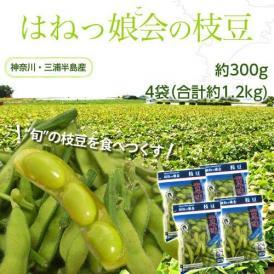 神奈川県 三浦半島産  はねっ娘会の枝豆  約300g×4袋(合計約1.2kg) 冷蔵