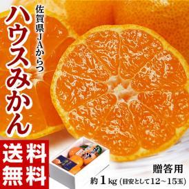 『ハウスみかん』 佐賀県産 JAからつ 約1kg(目安として12~15玉) 化粧箱 ※常温 送料無料