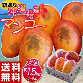 『訳あり沖縄マンゴー』沖縄県産 マンゴー 約1.5kg(3~6玉)産地箱入 ※常温 送料無料