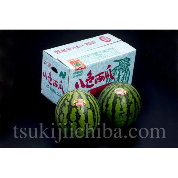 《送料無料》新潟県産「八色西瓜(やいろすいか)」 Lサイズ 2玉 合計約13kg 秀品 ☆02