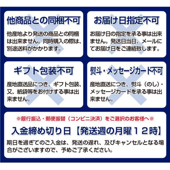 《送料無料》新潟県産「八色西瓜(やいろすいか)」 Lサイズ 2玉 合計約13kg 秀品 ☆04