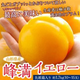 プラム すもも スモモ 山形県産 峰満イエロー 化粧箱 10~15玉 約1.7kg 送料無料