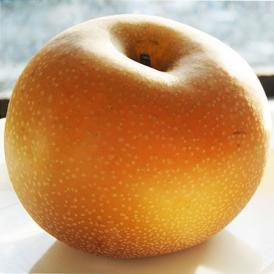 『あきづき梨』栃木県宇都宮産 約5kg(6~10玉入)※冷蔵 送料無料