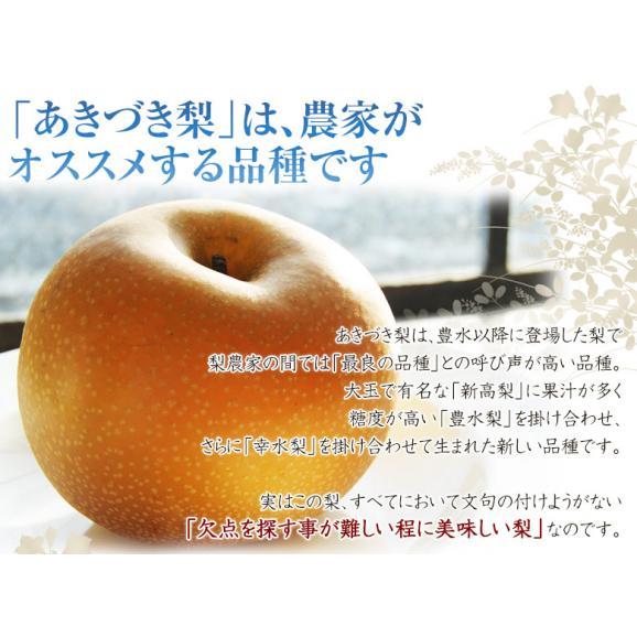 『あきづき梨』栃木県宇都宮産 約5kg(6~10玉入)※冷蔵 送料無料02