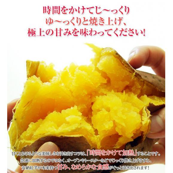 安納芋 芋 いも 種子島産 循環型農法 安納紅芋 正規品 約5kg 送料無料05