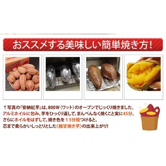 安納芋 芋 いも 種子島産 循環型農法 安納紅芋 正規品 約5kg 送料無料06