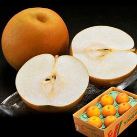 送料無料 栃木県産 きらり梨 6~12玉 約5kg ※冷蔵
