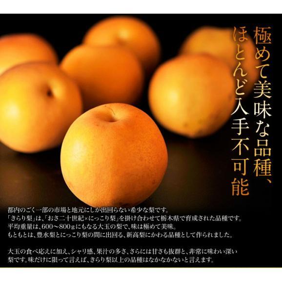 梨 なし 栃木県産 きらり梨 約5kg (6~12玉) 送料無料02