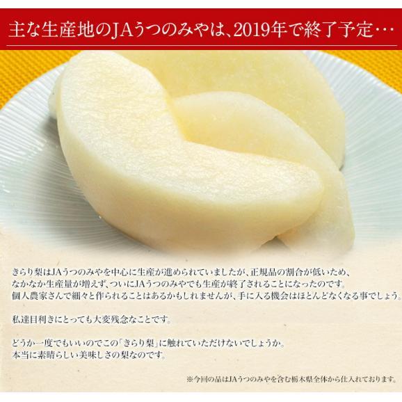 梨 なし 栃木県産 きらり梨 約5kg (6~12玉) 送料無料03