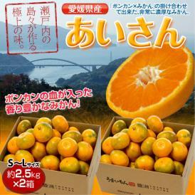 みかん 愛媛県産 あいさん S~Lサイズ 約2.5kg×2箱 送料無料