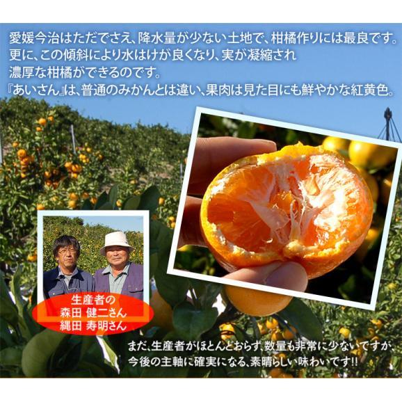 みかん 愛媛県産 あいさん S~Lサイズ 約2.5kg×2箱 送料無料04