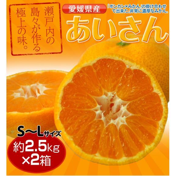 みかん 愛媛県産 あいさん S~Lサイズ 約2.5kg×2箱 送料無料05