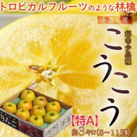 りんご 林檎 リンゴ 青森県産 こうこう林檎 約3kg 8~11玉 特A ※3箱まで送料1口で配送