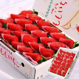 いちご イチゴ 苺 ギフト 徳島県佐那河内産 さくらももいちご 化粧箱 20~24粒 約700g ※冷蔵 送料無料