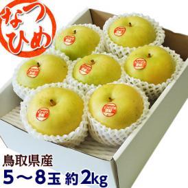 梨 なし 鳥取県産 新品種梨 なつひめ 約2kg(5~8玉) ※冷蔵 送料無料