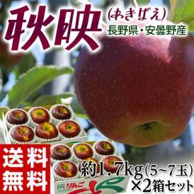長野県安曇野産 りんご 『秋映』 約1.7kg風袋込み(5~7玉)×2箱 産地箱入 ※常温 送料無料