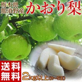梨 なし 栃木県産 かおり梨 2kg以上 2〜5玉 送料無料 常温