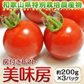 和歌山県産 特別栽培農産物 房付き「美味房(おいしんぼう)トマト」 1パック 約200g×3パック ○