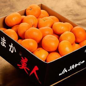 『うまか美人(超大玉)』佐賀県産 みかん 2L~3Lサイズ 約5kg 産地箱入※常温 送料無料