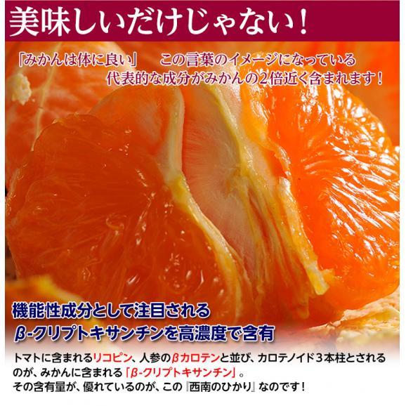 新品種のみかん 送料無料 香川県産 西南のひかり 約5kg 秀~優品 M~3Lサイズ04