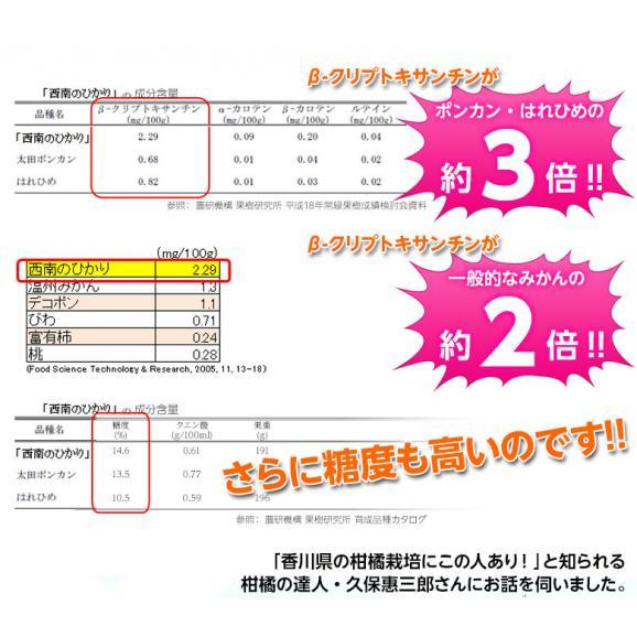 新品種のみかん 送料無料 香川県産 西南のひかり 約5kg 秀~優品 M~3Lサイズ05