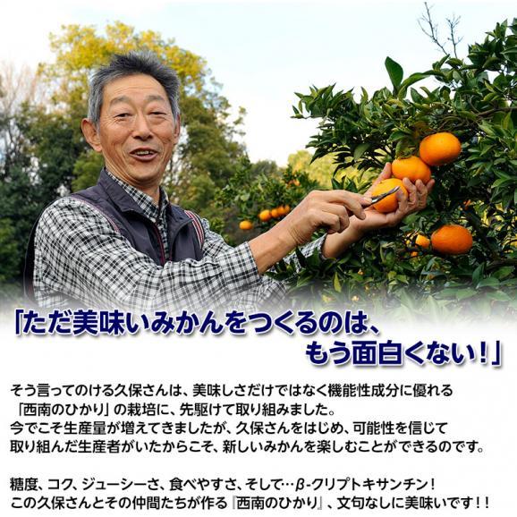 新品種のみかん 送料無料 香川県産 西南のひかり 約5kg 秀~優品 M~3Lサイズ06