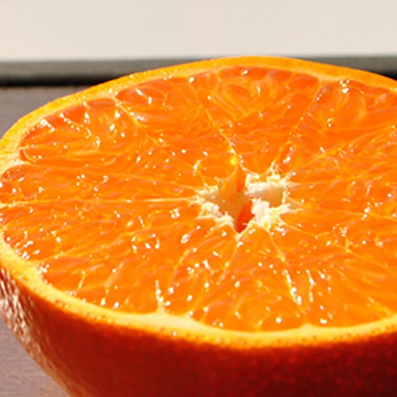 送料無料 みかん 柑橘 佐賀産 ハウス栽培 せとか 秀品 化粧箱 12~18玉 約2.5kg01