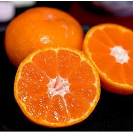 橋爪流栽培みかん 俊菓(しゅんか) 和歌山県産 2S~Mサイズ 約2.5キロ ※常温 送料無料