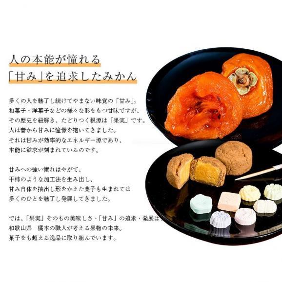 橋爪流栽培みかん 俊菓(しゅんか) 和歌山県産 2S~Mサイズ 約2.5キロ ※常温 送料無料03