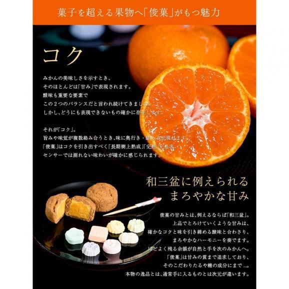橋爪流栽培みかん 俊菓(しゅんか) 和歌山県産 2S~Mサイズ 約2.5キロ ※常温 送料無料04