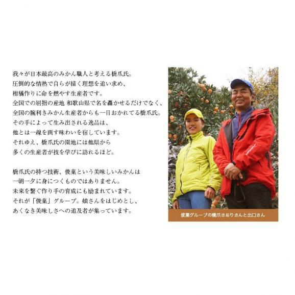 橋爪流栽培みかん 俊菓(しゅんか) 和歌山県産 2S~Mサイズ 約2.5キロ ※常温 送料無料05