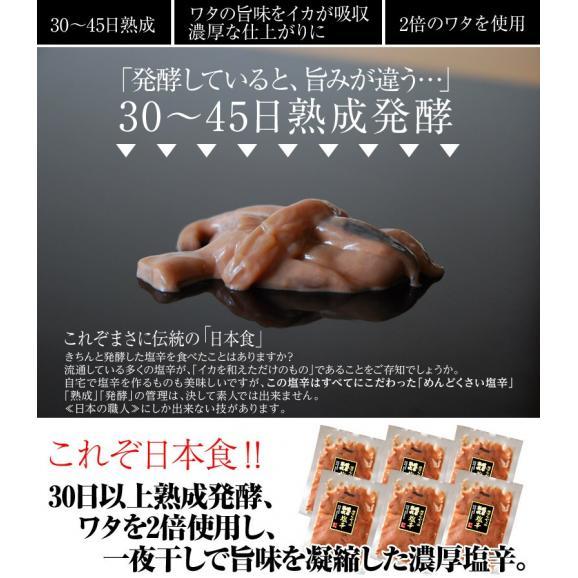 塩辛 しおから イカ 濃厚塩辛 約50g×6袋 おつまみ 酒の肴 しおから 塩から いか 烏賊 魚介 送料無料 冷凍同梱可能02