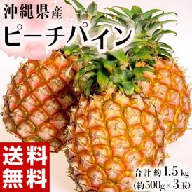 パイナップル 沖縄県産 ピーチパイン 約500g×3玉 合計1.5kg 送料無料