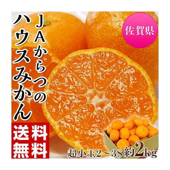 みかん 佐賀県産 JAからつ 超小玉ハウスみかん 2~3Sサイズ 約2kg 送料無料 ☆01