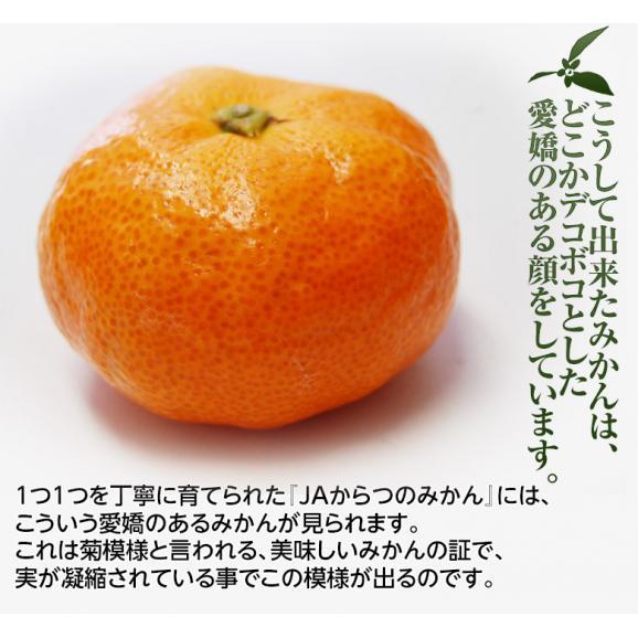 みかん 佐賀県産 JAからつ 超小玉ハウスみかん 2~3Sサイズ 約2kg 送料無料 ☆06