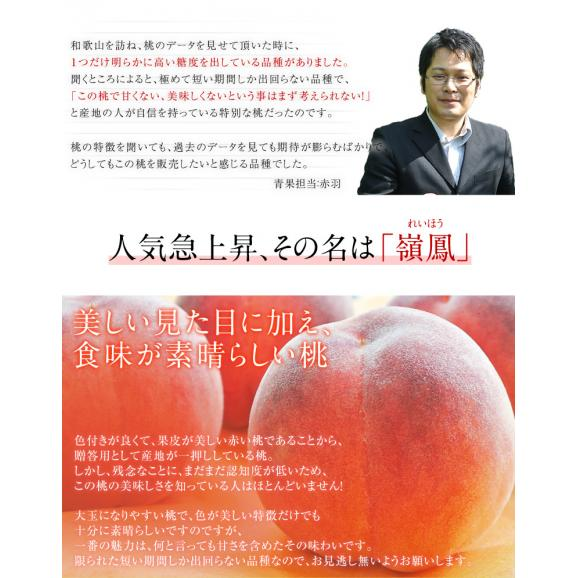 送料無料 和歌山 紀の里産「嶺鳳桃」 約2kg(6~8玉)化粧箱入り02