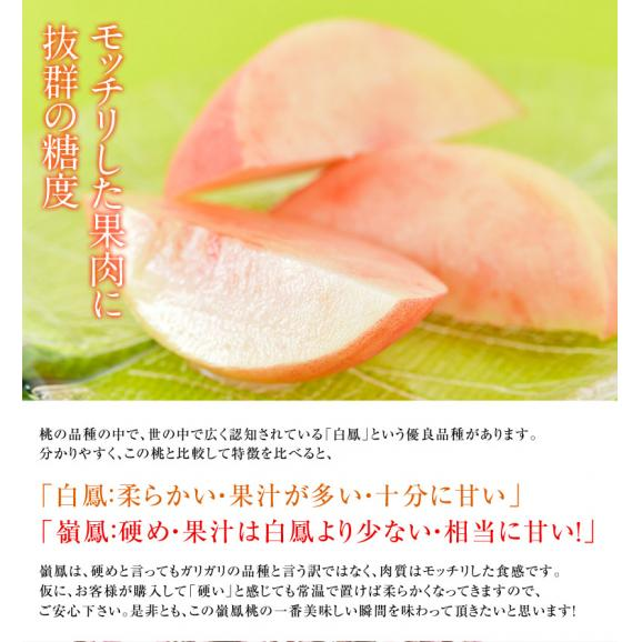 送料無料 和歌山 紀の里産「嶺鳳桃」 約2kg(6~8玉)化粧箱入り03