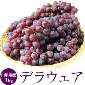 葡萄 ぶどう 山形県産 デラウェア 約1kg 4~8房 送料無料 冷蔵