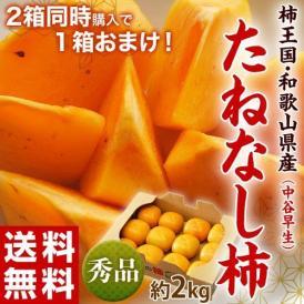 【2箱購入で1箱オマケ】柿 かき 和歌山産 たねなし柿 (中谷早生) 秀品 10~12個入り 約2kg 送料無料