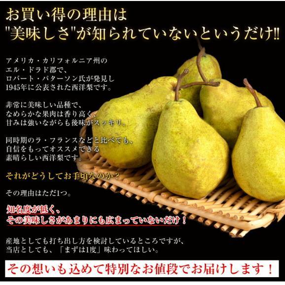 送料無料 洋なし 山形産 西洋梨「エルドラド」約5kg 12~20玉03