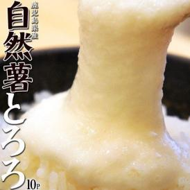 自然薯 とろろ 鹿児島県産 40g×10パック セット じねんじょ 山芋 国産 小分け パック 簡単 とろろご飯 とろろそば 蕎麦 冷凍 同梱可能