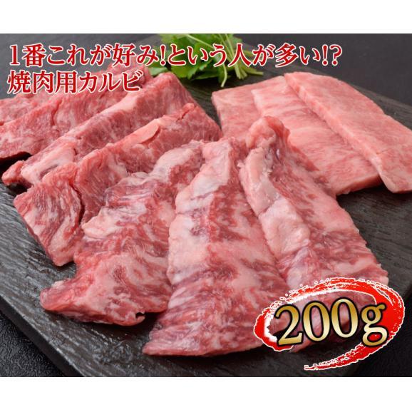 肉 牛肉 牛 すき焼き サーロイン 入り 最高級 A5 黒毛和牛 仙台牛 特選セット 4種 1キロ 内祝い プレゼント 送料無料04