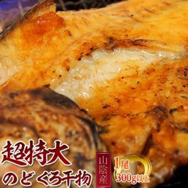 山陰産 『のどぐろ』 300g 超特大サイズ ※冷凍
