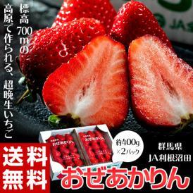 いちご イチゴ 苺 群馬県産 JA利根沼田 おぜあかりん (8~15粒) 約400g×2 送料無料 ※冷蔵