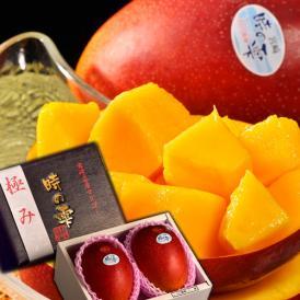 宮崎産完熟マンゴー『時の雫《極み》』 2Lサイズ 350g~449g×2玉 化粧箱入