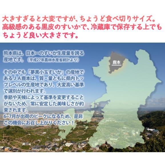 《送料無料》 熊本県産「夢黒小玉すいか」4L×1玉 1箱 秀品 約3kg frt ○04