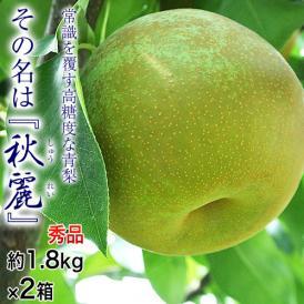 梨 なし 熊本県産 秋麗梨 秀品 約1.8kg×2箱 (1箱:5~7玉入) 送料無料 ※冷蔵