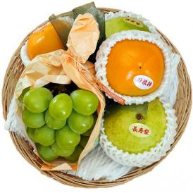【敬老の日限定】 長生きフルーツバスケット 3種5品 ※冷蔵 送料無料