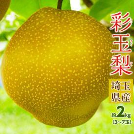 梨 なし さいぎょく 埼玉県産 彩玉 約2kg (3~7玉) 送料無料 ※冷蔵