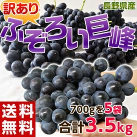 ぶどう ブドウ 葡萄 訳あり 長野県産 ふぞろい 巨峰 約3.5kg (約700g×5袋) 送料無料